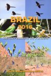 Brazil 2016 - Conservation in Action