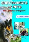 Grey Parrots as Pets