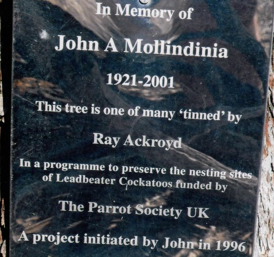 Ray Ackroyd at John's Tree and details written on John's memorial palque