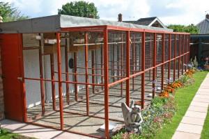 Garden aviary 1